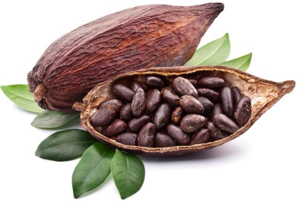 Плоды какао как употреблять