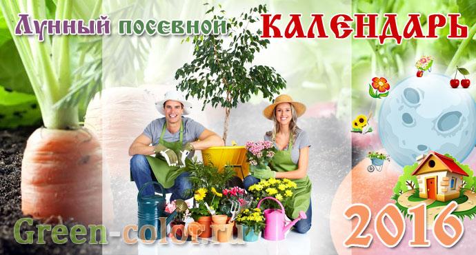 Народный календарь праздников на год