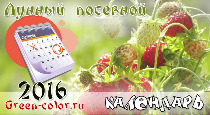 Погода невьянск на месяц май