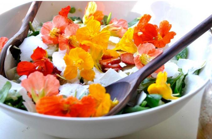 Какие цветы можно употреблять в пищу