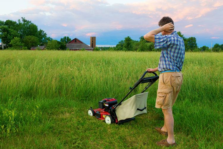 Знаком девы косить газон под