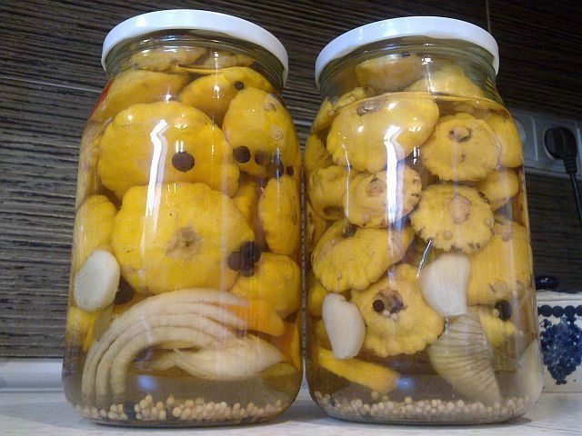Баклажаны на зиму рецепты как грибы с майонезом