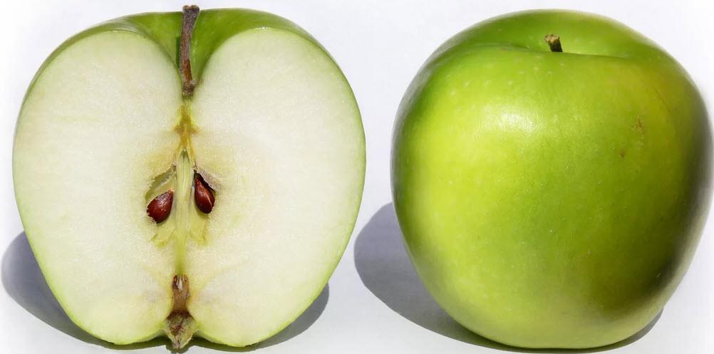 семена яблок вред